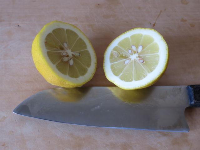 レモン真っ二つ!