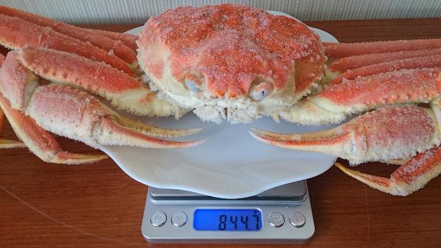 冷凍されたずわいがにの重さは844.7グラム