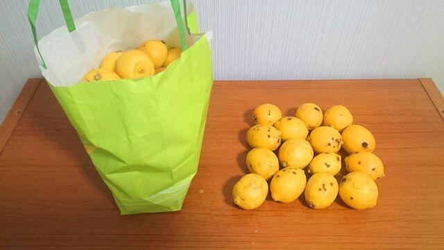レモンは紙袋に入れて冷蔵庫に入れておくと長持ちします
