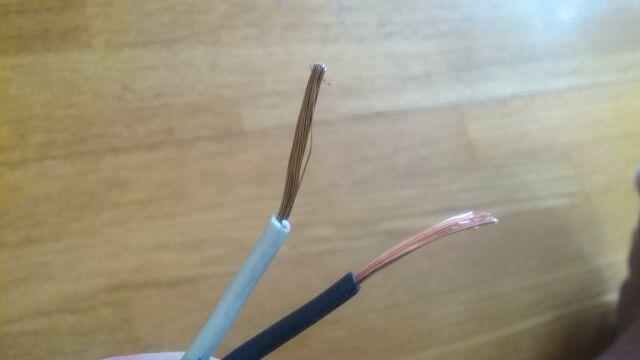 被覆を剥いて露になった銅線