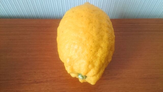 表面が凸凹したレモン
