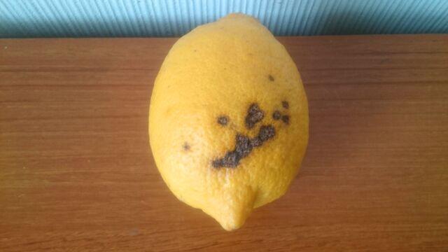 見た目の悪いレモン