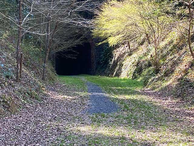 森の中にポツンとある大棚トンネル