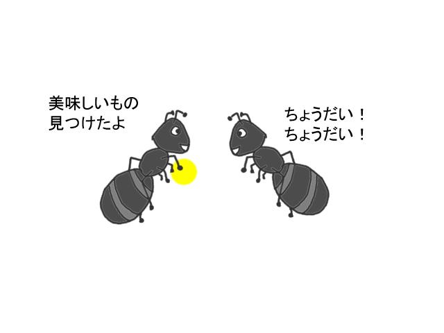 アリメツを仲間の蟻に分け与える