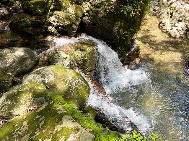 上段から見る下段の滝つぼ