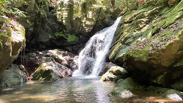 中山渓の雌滝